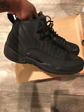 jordan 12 winter all black