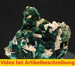6567-Malachit-Cerussit-cerussite-ca-5-3-3-cm-Browns-Open-Pit-Australien-MOVIE