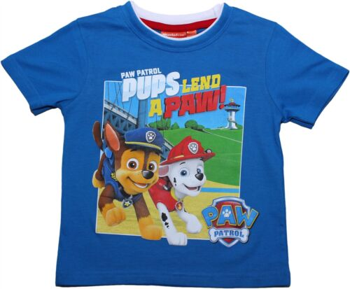 Paw Patrol Boys Im Fired Up Short Sleeve T Shirt