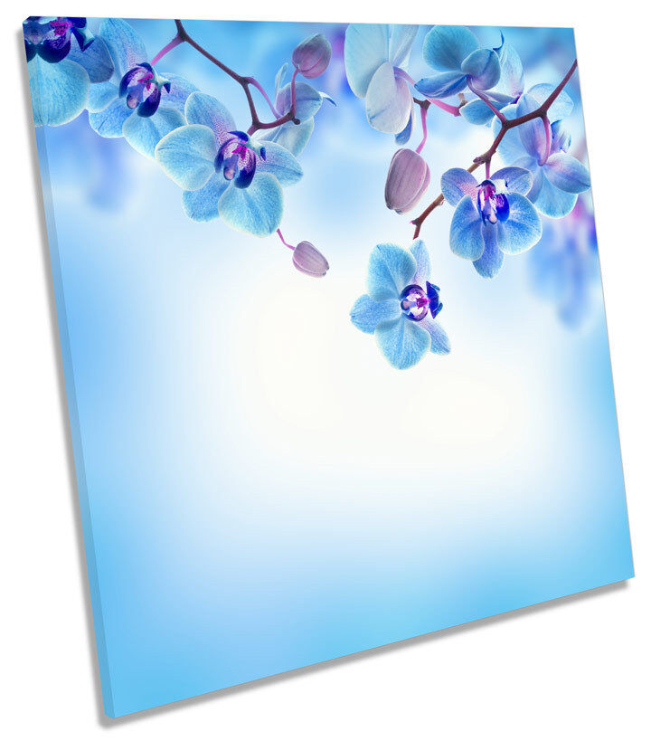 Blau Floral Flowers CANVAS WALL ART SQUARE Picture Print