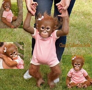 Ashton Drake Quot Annabelles Hugs Quot Lifelike 22 Quot Baby Monkey