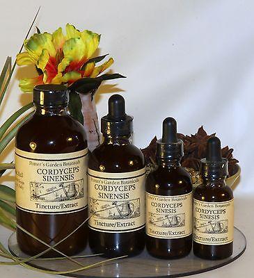CORDYCEPS MUSHROOM Tincture Extract  ~ Strong  4sizes