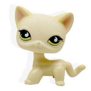 733-Littlest-Pet-Shop-Yellow-Cream-Short-Hair-Cat-Kitty-Green-Eyes-RARE-Toy-LPS