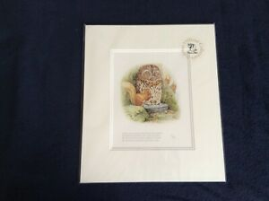 Beatrix-Potter-Mr-Brown-paid-no-attention-to-Squirrel-Nutkin-acetate-wrapped