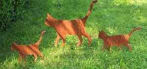 EDELROST-Katze-Katzenfamilie-Tier-Skulptur-Rost-Gartendeko-Edel-Kunst-Metall-NEU