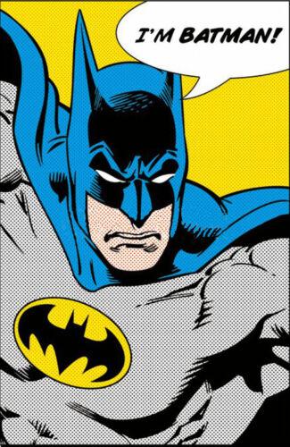 """SIZE 24/""""x36/"""" DC COMICS POSTER I/'M BATMAN BATMAN QUOTE POSTER"""