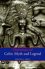 Dictionary of Celtic Myth and Legend by Miranda J. Green (Paperback, 1997)