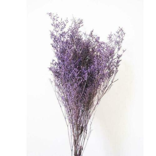1 Bunch Natural Dried Flowers Bouquet Lover Grass Home Party Decor Art Crafts