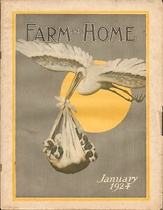 JAN-1924-FARM-AND-HOME-farming-magazine-BABY-DOGS-STORK