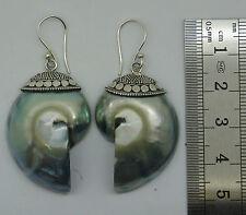 d Rare Grey Nautilus Shell Designer Dangle Earrings 925 Sterling Silver NEW
