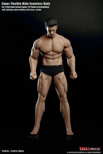 TBLeague Acier Inoxydable 1//12 Muscle Mâle Figure Corps Avec Tête Modèle PH2019-TM02A