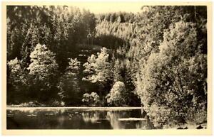 Finsterbergen-Thueringer-Wald-DDR-Postkarte-1955-Partie-am-Brandleiteteich-Wald