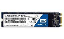 WD Western Digital Blue SSD 1TB WDS100T1B0B SATA III 6Gb/s M.2 2280  NIB!