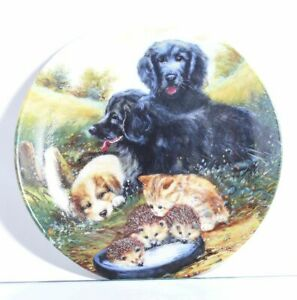 Collection-Plate-Vohenstrauss-Dog-Cat-First-Experience-With-Certificate
