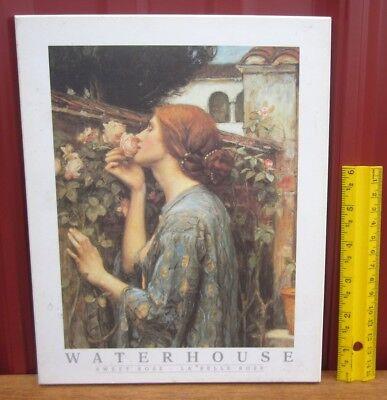 John William Waterhouse My Sweet Rose Art Print Poster 24x36
