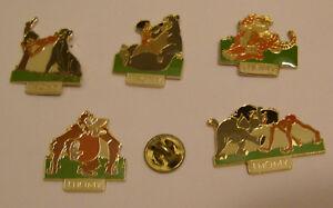5-pins-JUNGLE-BOOK-DISNEY-THOMY-Mowgli-Baloo-Shere-Khan-Bagheera-Roi-Louie-Hathi