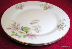 SET-s-OF-2-PT-Tirschenreuth-Apple-Blossom-White-10-1-8-034-DINNER-PLATES-EUC