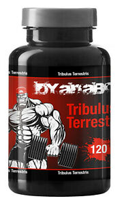 Dyanabol-Tribulus-Testosteron-Booster-Kapseln-Muskelaufbau-Anabol-95-Saponine
