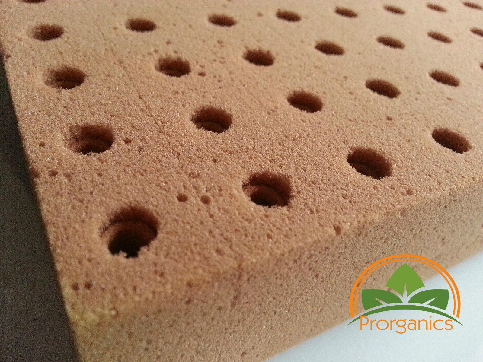 5520 hydroponics grow starter cubes by Prorganics