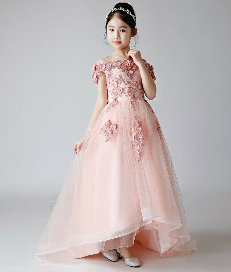 Children's Girls Gorgeous Pink Princess Embroidered Party Dress Ball Gown ZG9