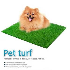 Indoor Puppy Dog Pet Potty Training Pee Pad Pet Toilet Lawn Mat Grass AU BEAT