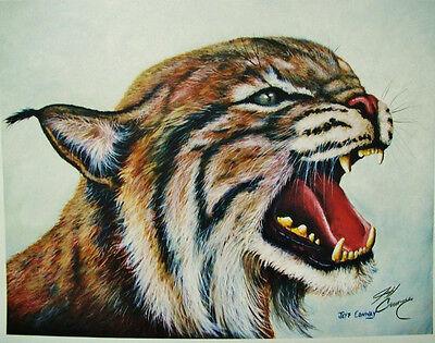 "/""Cat-Aritaville/"" UK Sig University of Kentucky Wildcat Print by Jeff Conway"