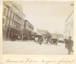 Tunisie-Tunis-Avenue-de-France-magasin-general-Vintage-albumen-print-Tira