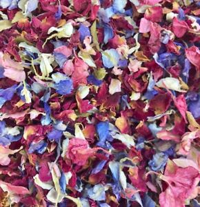 Natural-Biodegradable-Wedding-Confetti-Red-Rose-Mix-Petals-Dried-Vintage-Flower