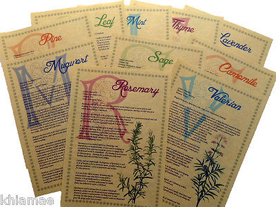 10 Herb BOOK OF SHADOWS PAGE SET wicca print parchment correspondence spells