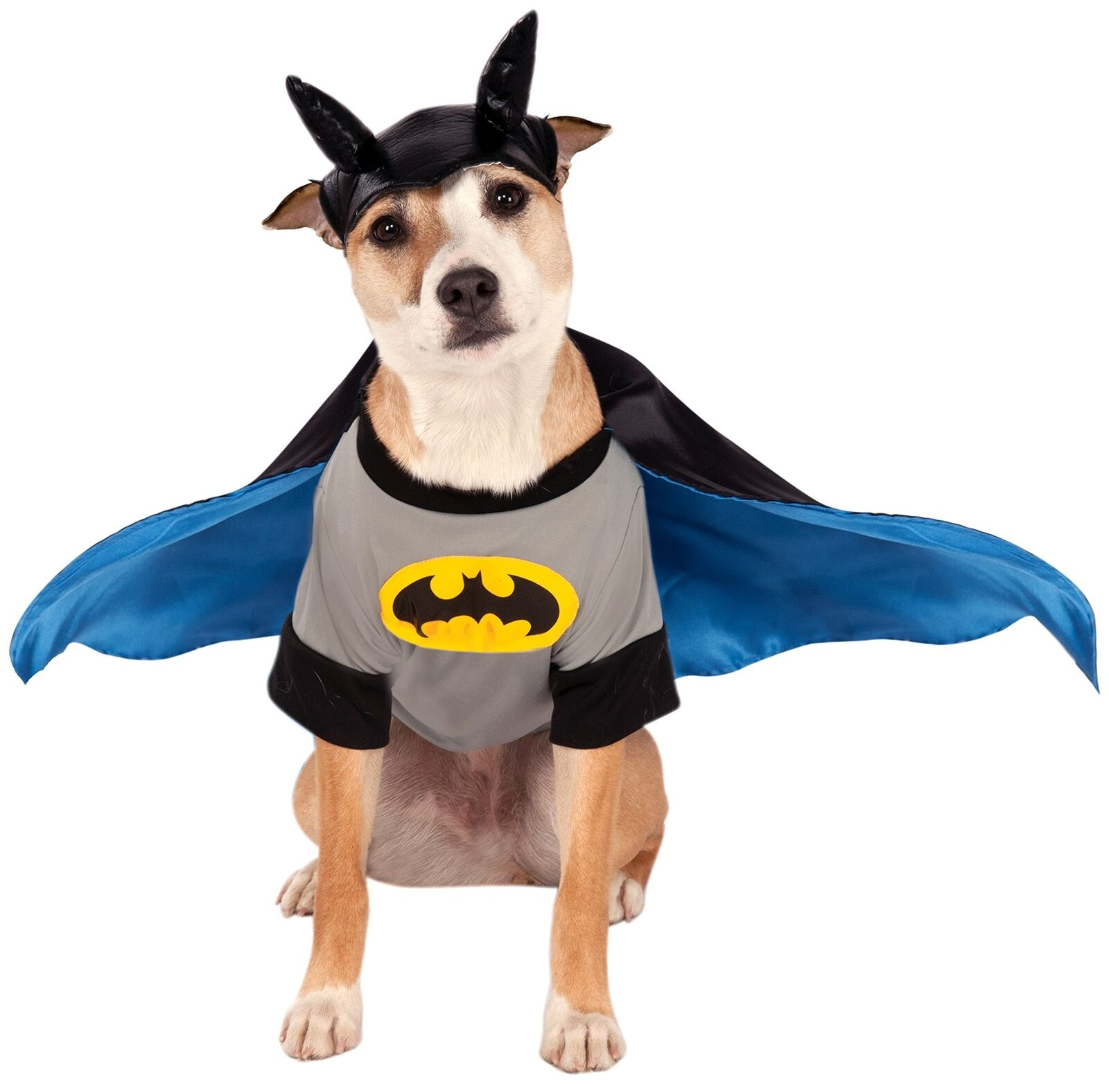 RUBIE'S DC Comics Pet Costume, Medio, Batman