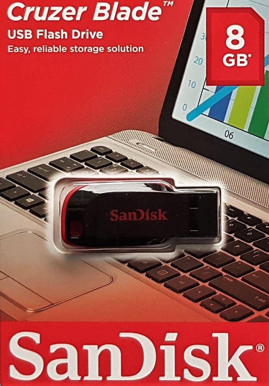 1x 8GB USB Stick