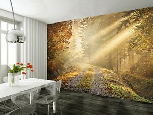 Image is loading Wall-mural-wallpaper-315x232cm-Autumn-forest-road-Large-