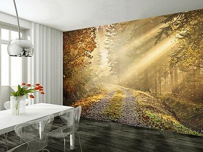 Wall mural wallpaper 315x232cm Autumn forest road Large home photo paper decor