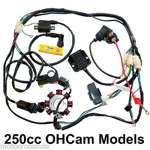 image is loading 250-dirt-bike-electrics-harness-magneto-cdi-coil-