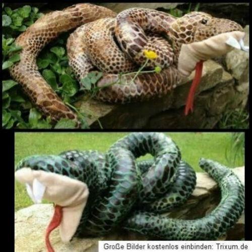 Schlange Stofftier 120cm aufgerollt giftig