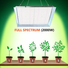 Led Grow Light Kit 2000w All Stage Veg Flower Indoor Plant Growing Lamp Dimmable