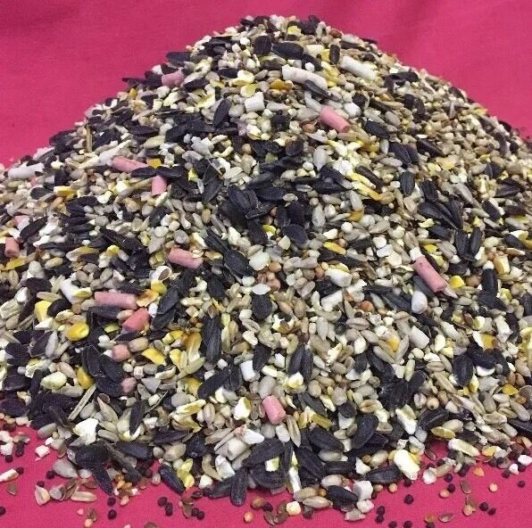 Premium Wild Bird Seed 18k High Energy Booster High Predein Oils Fat Suet Pellet