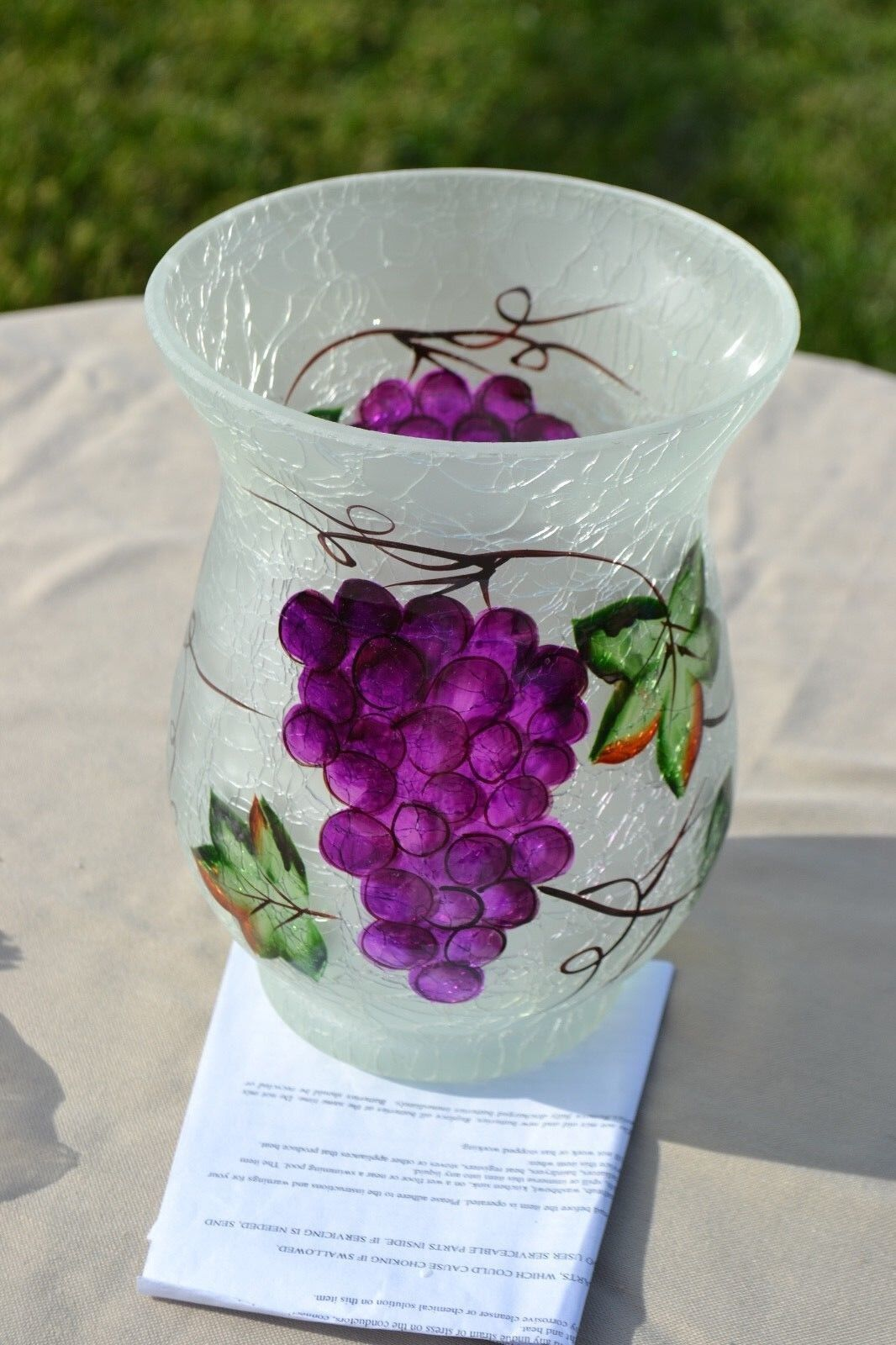 Frosted Glass Vase with Micro Lights by Valerie H203593