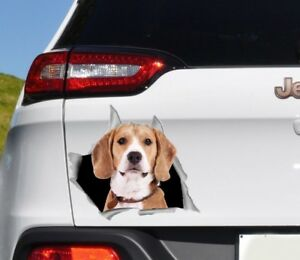 Bumper Stickers For Cars >> Details About Car Bumper Sticker Beagle Decal Dog Sticker Car Window Decal Car Vinyl O14