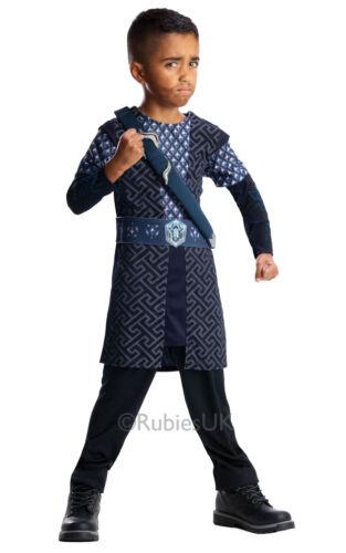 Costume ROBE FANTAISIE ~ seigneur des anneaux Thorin moyen âge 5-6