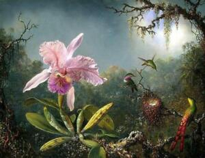 Cattleya-Orchid-amp-Three-Brazilian-Hummingbirds-by-Martin-Johnson-Heade-Painting