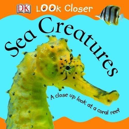 Excellent, Sea Creatures (Look Closer), Publishing, DK, Book