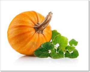 Yellow Pumpkin Vegetable With Green Art Print Home Decor Wall Art Poster J