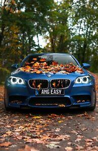 2012 BMW M5 -