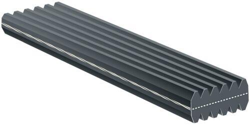 For Porsche Cayenne 08-14 Panamera 10-16 Serpentine Belt Dual Micro-V DK071135