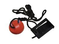 Gold's Gym Trainer 410 Treadmill Safety Key Ggtl396103