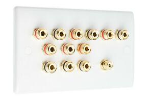 2 RCA/'s NON SOLDER 9.2 Slimline Audio AV Speaker Plate Gold 18 Binding Posts