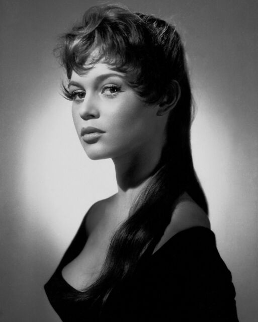Brigitte Bardot 8x10 Classic Hollywood Photo. 8 x 10 B&W Picture #10