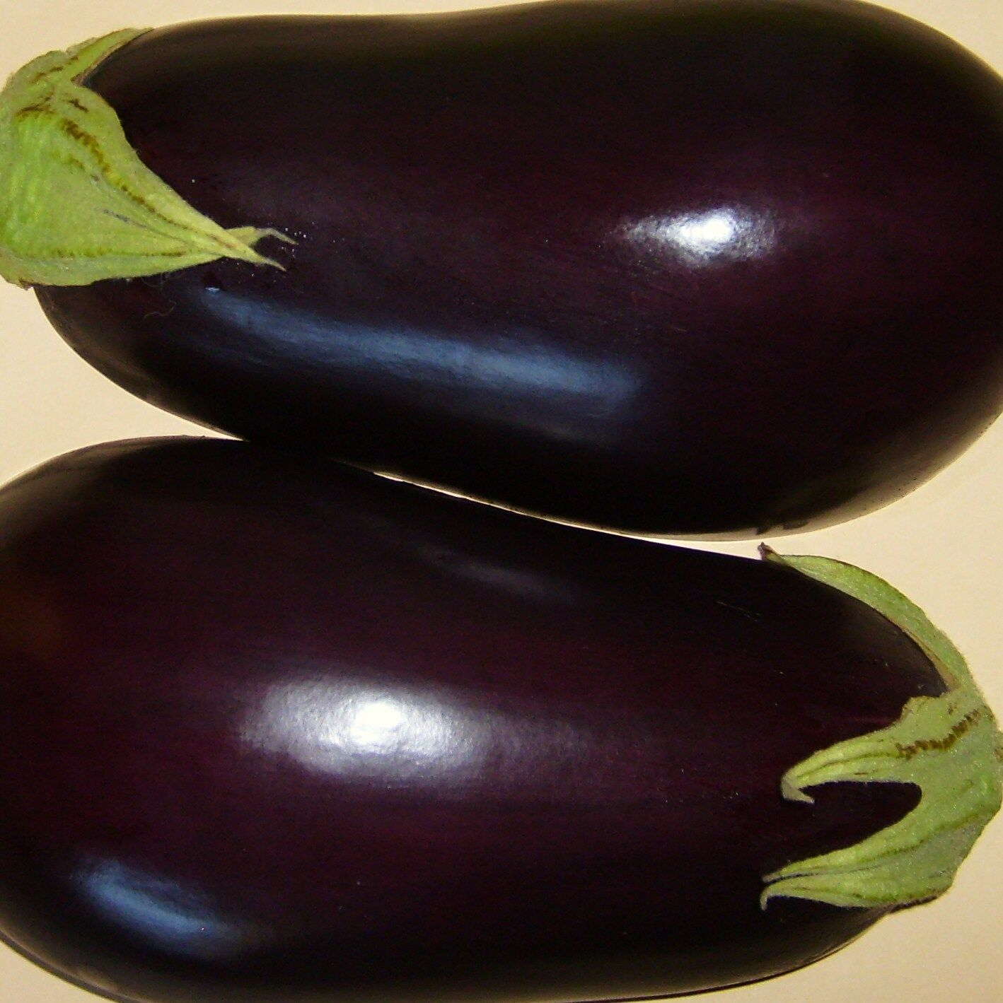 AUBERGINE - BLACK BEAUTY - 160 Seeds [..handsome, pear-shaped fruits, reliable]