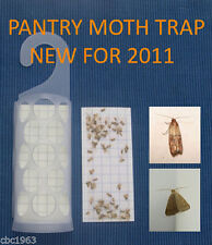 KRITTERKILL-LARDER-PANTRY-INDIAN-MOTH-PHEROMONE-TRAP-OVER-300,000-PADS-SOLD